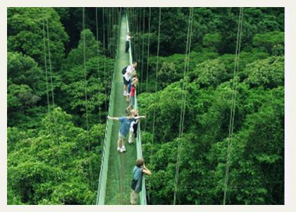 costa-rica-tours-canopy-walkway & Costa Rica nature tours