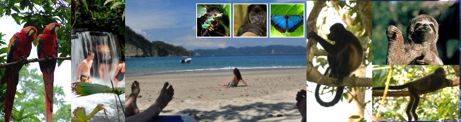 Educational tours to Costa Rica